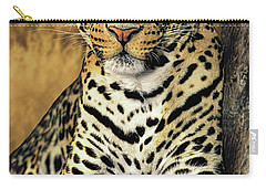 African Leopard Portrait Wildlife Rescue Carry-all Pouch
