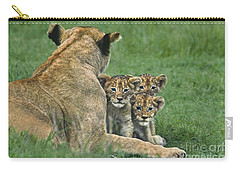African Lion Cubs Study The Photographer Tanzania Carry-all Pouch