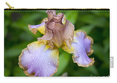 After A Rain Carry-all Pouch by Alana Ranney