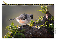After The Bath Carry-all Pouch by Nava Thompson