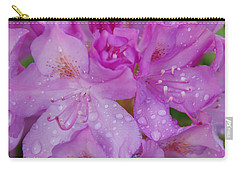 Carry-all Pouch featuring the photograph After The Rain by Aimee L Maher Photography and Art Visit ALMGallerydotcom