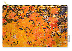 After The Rain Carry-all Pouch by Sue Smith