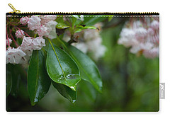 After The Storm Carry-all Pouch by Patrice Zinck