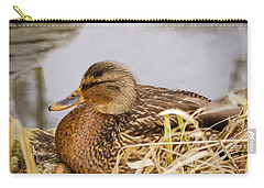 Carry-all Pouch featuring the photograph Afternoon Siesta by Jordan Blackstone