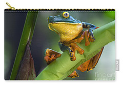Agalychnis Calcarifer 4 Carry-all Pouch