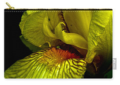 Carry-all Pouch featuring the photograph Aieris by Joel Loftus