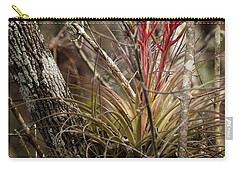 Air Plant Carry-all Pouch