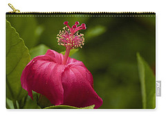 Akalewa Carry-all Pouch
