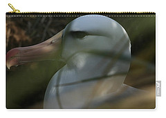 Carry-all Pouch featuring the photograph Albatross by Amanda Stadther