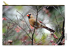 Alert - Northern Cardinal Carry-all Pouch by Ramabhadran Thirupattur