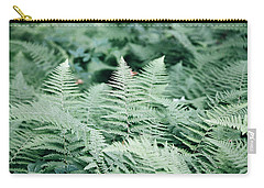Carry-all Pouch featuring the photograph Algonquin Ferns by David Porteus
