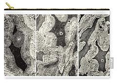 Alien Triptych Landscape Bw Carry-all Pouch