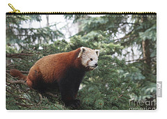 All Alone Carry-all Pouch by Judy Whitton