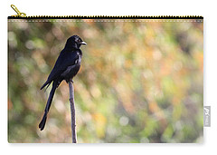 Carry-all Pouch featuring the photograph Alone - Black Drongo  by Ramabhadran Thirupattur
