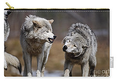 Carry-all Pouch featuring the photograph Alpha Displeasure by Wolves Only