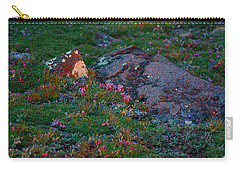Carry-all Pouch featuring the photograph Alpine Blush by Jim Garrison
