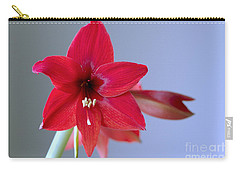 Amaryllis 2 Carry-all Pouch