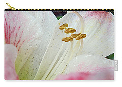Carry-all Pouch featuring the photograph Amaryllis Belladonna by Judy Hall-Folde