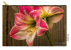 Amaryllis Blooms Carry-all Pouch