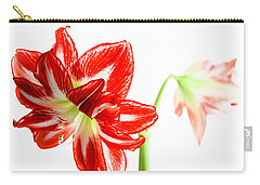 Amaryllis Duet Carry-all Pouch by Tony Grider