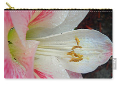 Carry-all Pouch featuring the photograph Amaryllis Kissed With Dew by Judy Hall-Folde