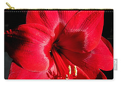 Amaryllis Named Black Pearl Carry-all Pouch by J McCombie