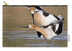 American Avocets Carry-all Pouch by Bryan Keil