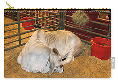Carry-all Pouch featuring the photograph American Brahman Heifer by Connie Fox