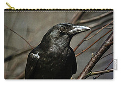 American Crow Carry-all Pouch by Lois Bryan