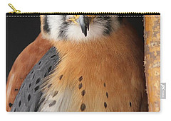 American Kestrel Carry-all Pouch by Diane Alexander