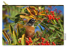 American Robin Carry-all Pouch by James Peterson