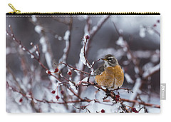 Carry-all Pouch featuring the photograph American Robin by Michael Chatt