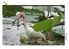 American White Ibis In Brazos Bend Carry-all Pouch