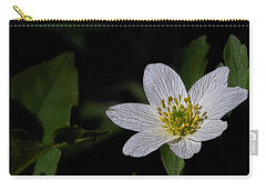 Carry-all Pouch featuring the photograph Anemone Nemorosa  By Leif Sohlman by Leif Sohlman
