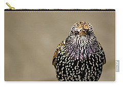 Angry Bird Carry-all Pouch by Heather Applegate