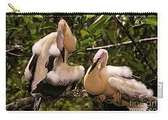 Anhinga Chicks Carry-all Pouch by Ron Sanford