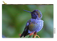 Annas Hummingbird Carry-all Pouch