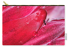 Ant Exploring Protea Petals Carry-all Pouch by Kaye Menner
