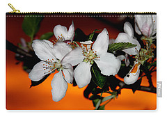Apple Blossom Sunrise I Carry-all Pouch