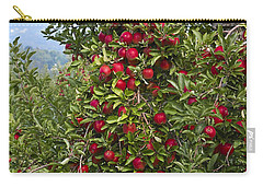 Apple Tree Carry-all Pouch by Anthony Sacco