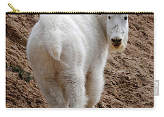 Carry-all Pouch featuring the photograph Are You Following Me by Vivian Christopher