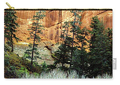 Arizona's Betatkin Aspens Carry-all Pouch by Ed  Riche