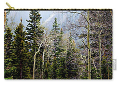 Around The Bend Carry-all Pouch by Barbara Chichester