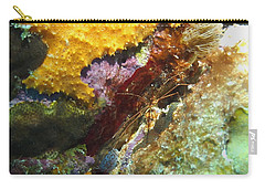 Carry-all Pouch featuring the photograph Arrow Crab In A Rainbow Of Coral by Amy McDaniel