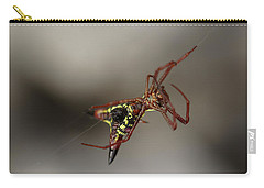 Arrow-shaped Micrathena Spider Starting A Web Carry-all Pouch by Daniel Reed