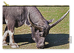 Asian Water Buffalo  Carry-all Pouch by Miroslava Jurcik