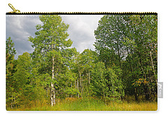 Carry-all Pouch featuring the photograph Aspen And Others by Jim Thompson