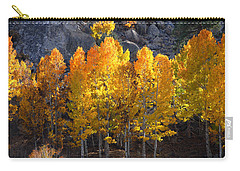 Carry-all Pouch featuring the photograph Aspen Gold by Lynn Bauer