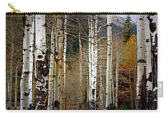 Carry-all Pouch featuring the photograph Aspen In The Rockies by Lynn Sprowl