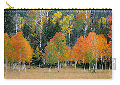 Aspens And Meadow-pan Carry-all Pouch